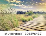 beautiful summer landscape with ... | Shutterstock . vector #306896432