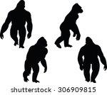 vector image vector image  ... | Shutterstock .eps vector #306909815