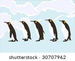 penguins walking in ice | Shutterstock .eps vector #30707962
