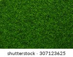 artificial grass closeup | Shutterstock . vector #307123625