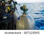 set of diving equipment on the... | Shutterstock . vector #307125092