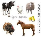 farm animals  black and white... | Shutterstock . vector #307154066