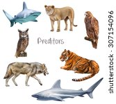 Predators Of Nature  Blue And...