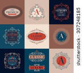 luxury logo template glamour... | Shutterstock .eps vector #307248185