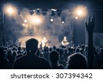 crowd at a concert in a vintage ... | Shutterstock . vector #307394342