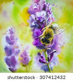 Honey Bee On A Lavender Flower...