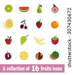 a collection of 16 fruits icons | Shutterstock .eps vector #307430672