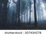 Halloween Forest Background