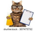 funny cat is studying chemistry.... | Shutterstock . vector #307475732