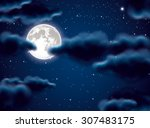 full moon and clouds | Shutterstock .eps vector #307483175