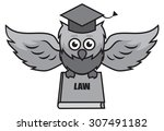 owl lawyer with a book of laws | Shutterstock .eps vector #307491182
