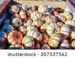 Colorful Miniature Orange And...