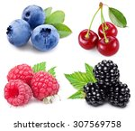 berries set with green leaves... | Shutterstock . vector #307569758