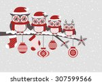 cute owls christmas seasonal... | Shutterstock .eps vector #307599566