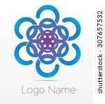 vector logo design  abstract... | Shutterstock .eps vector #307657532