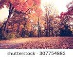 autumn | Shutterstock . vector #307754882