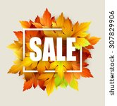 autumn typographic. fall leaf.... | Shutterstock .eps vector #307829906