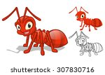 high quality detailed red ant... | Shutterstock .eps vector #307830716