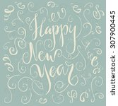 happy new year   hand drawn... | Shutterstock .eps vector #307900445