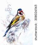 Goldfinches. Bright Bird In...