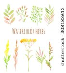 watercolor set of flowers and... | Shutterstock . vector #308183612
