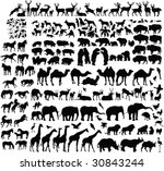 Stock vector two hundred animal silhouettes vector 30843244