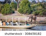 tourist observe elephants in... | Shutterstock . vector #308658182
