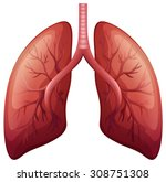 Lung Cancer Diagram In Detail...