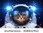beautiful cat in outer space.... | Shutterstock . vector #308832962