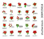 bouquet icons set   isolated on ... | Shutterstock .eps vector #308925818