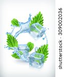 mint with ice cubes and water... | Shutterstock .eps vector #309002036