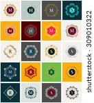 a set of luxury logo templates. ... | Shutterstock .eps vector #309010322