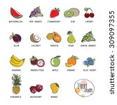 collection fruits icons vector... | Shutterstock .eps vector #309097355