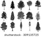 set or collection of common... | Shutterstock . vector #309135725