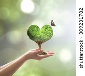 Growing Tree Plant In Heart...