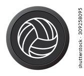 volleyball ball   vector icon... | Shutterstock .eps vector #309258095
