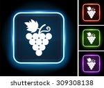 grape vine on glow square button   Shutterstock .eps vector #309308138