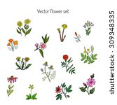 vector set with vintage flowers. | Shutterstock .eps vector #309348335