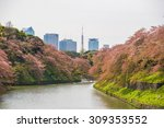 sakura blossom at kitanomaru... | Shutterstock . vector #309353552