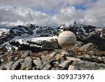 monument of jupiter in... | Shutterstock . vector #309373976