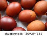 easter eggs | Shutterstock . vector #309394856