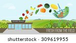 organic market concept. vector... | Shutterstock .eps vector #309619955