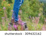 men's feet on the grass in the... | Shutterstock . vector #309632162