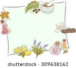 frame illustration featuring... | Shutterstock .eps vector #309638162