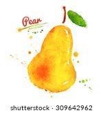 watercolor hand drawn yellow... | Shutterstock . vector #309642962