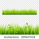green and bright grass border... | Shutterstock .eps vector #309647018