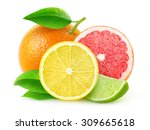 isolated citrus fruits. pieces... | Shutterstock . vector #309665618