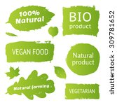 natural  organic  bio product ... | Shutterstock .eps vector #309781652