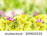 wildflowers daisies. flowers... | Shutterstock . vector #309820235