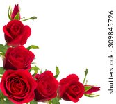 Stock photo bouquet of red roses on white background 309845726